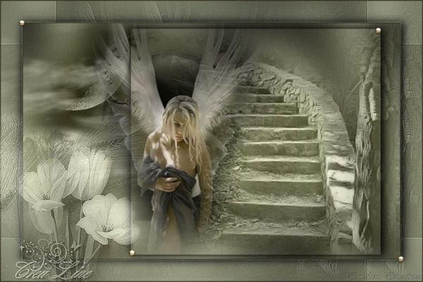 l`ange de la nuit -tutoriel psp